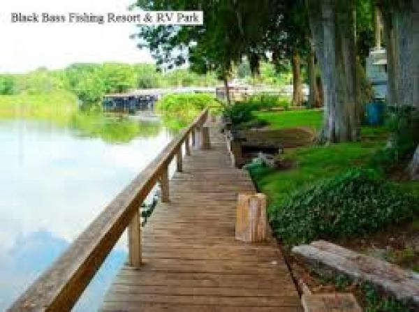 Campgrounds for Fish camp lake eustis